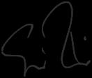 signature 0